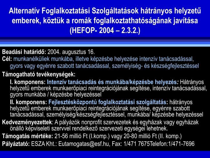 Alternatv Foglalkoztatsi Szolgltatsok htrnyos helyzet emberek, kztk a romk foglalkoztathatsgnak javtsa (HEFOP- 2004  2.3.2.)