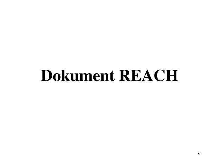 Dokument REACH