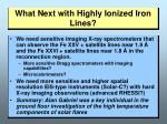 what next with highly ionized iron lines