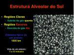 estrutura alveolar do sol