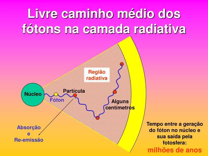Livre caminho médio dos fótons na camada radiativa