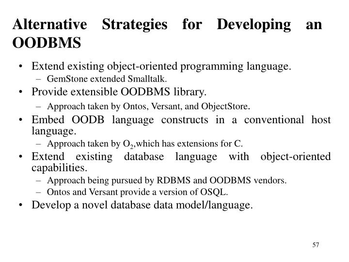 Alternative Strategies for Developing an OODBMS