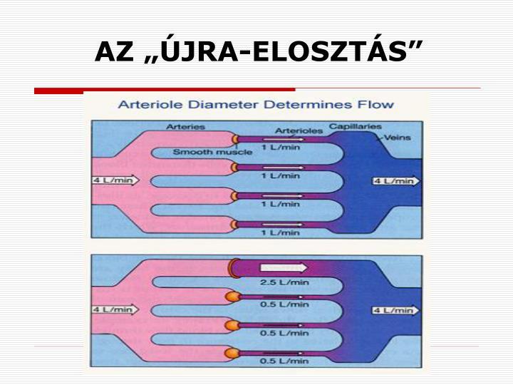 """AZ """"ÚJRA-ELOSZTÁS"""""""
