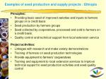 examples of seed production and supply projects ethiopia1