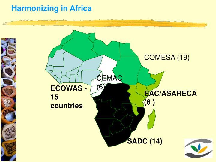 Harmonizing in Africa