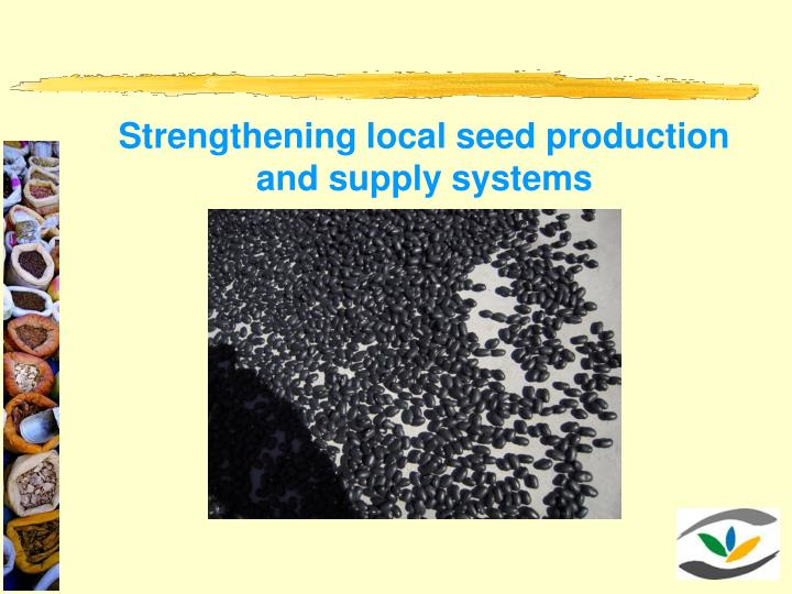 Strengthening local seed production and supply systems