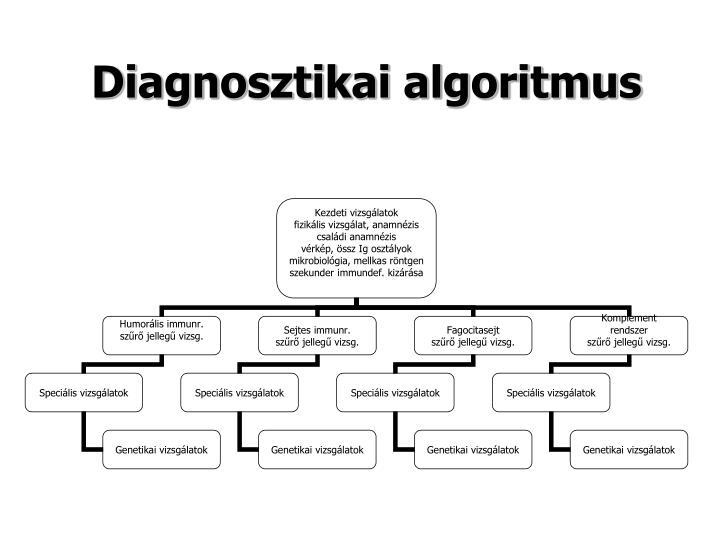 Diagnosztikai algoritmus