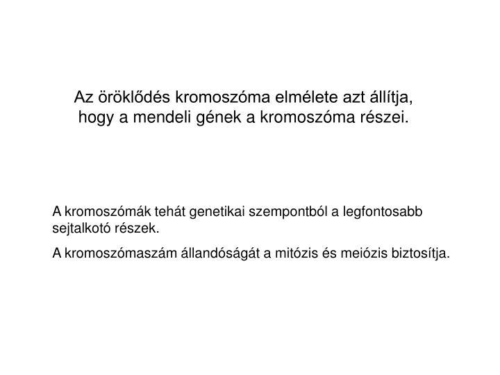 Az öröklődés kromoszóma elmélete azt állítja, hogy a