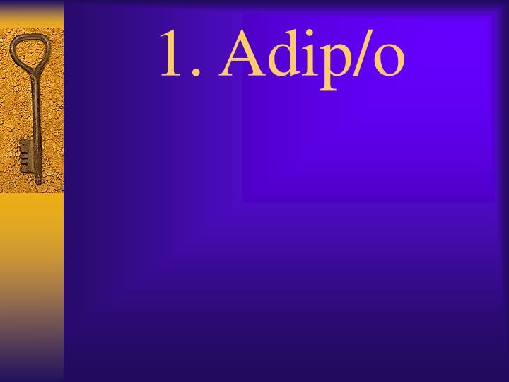 1. Adip/o