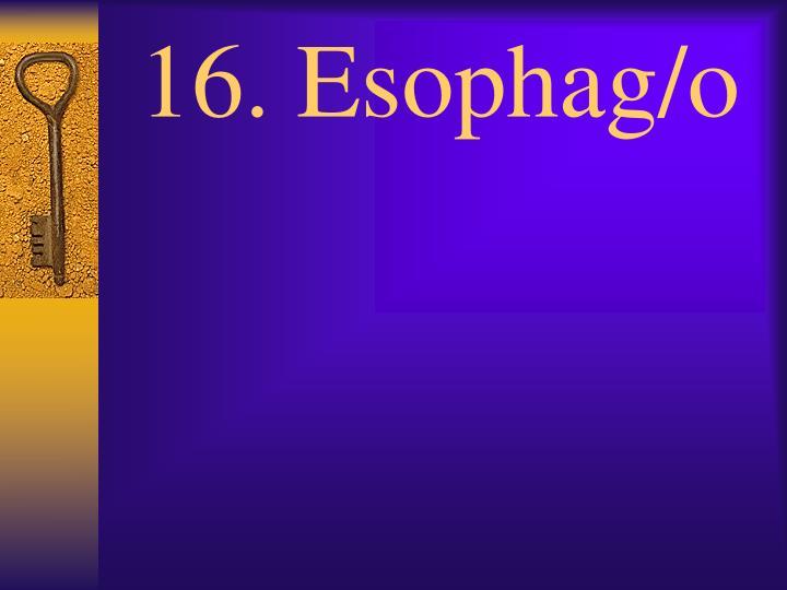 16. Esophag/o