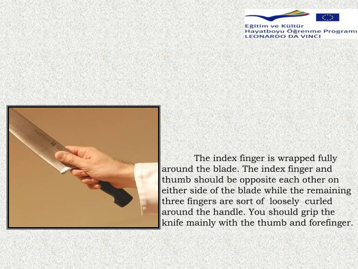 The index finger is wrapped fully around the blade. The index finger and thumb should be opposite each other on either side of the blade while the remaining three fingers are sort of  loosely  curled around the handle. You should grip the knife mainly with the thumb and forefinger.