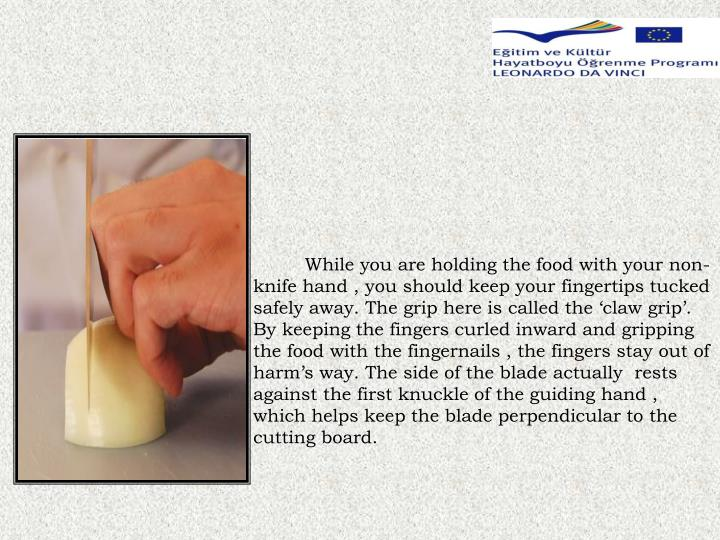 While you are holding the food with your non-knife hand , you should keep your fingertips tucked safely away. The grip here is called the 'claw grip'. By keeping the fingers curled inward and gripping the food with the fingernails , the fingers stay out of harm's way. The side of the blade actually  rests against the first knuckle of the guiding hand , which helps keep the blade perpendicular to the cutting board.