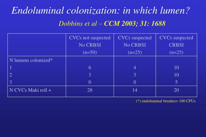 Endoluminal colonization: in which lumen?