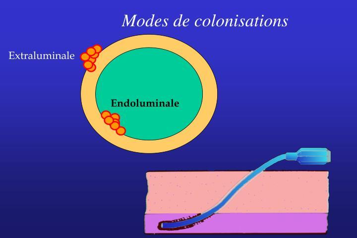 Modes de colonisations
