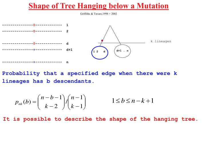Shape of Tree Hanging below a Mutation
