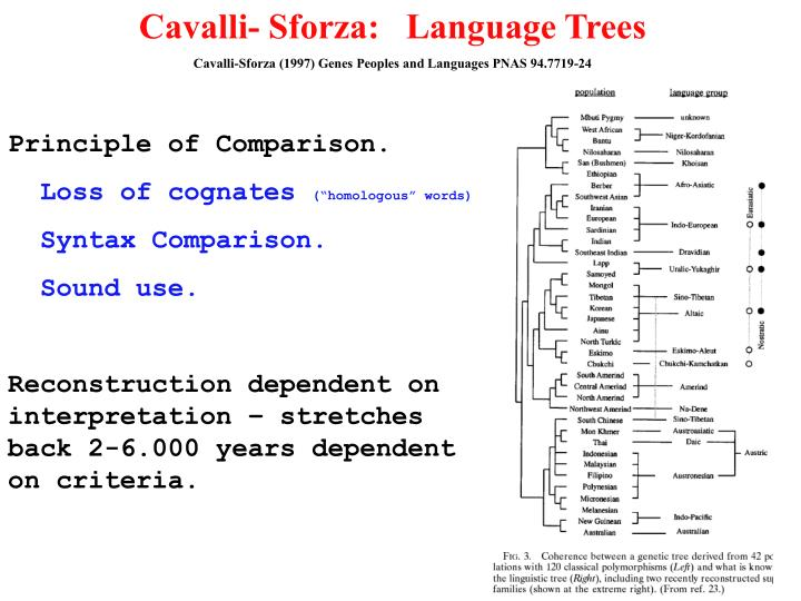 Cavalli- Sforza:   Language Trees