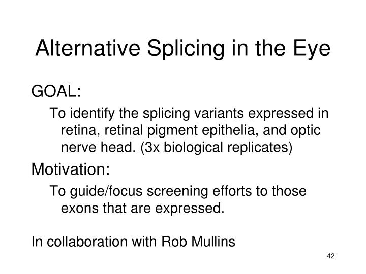 Alternative Splicing in the Eye