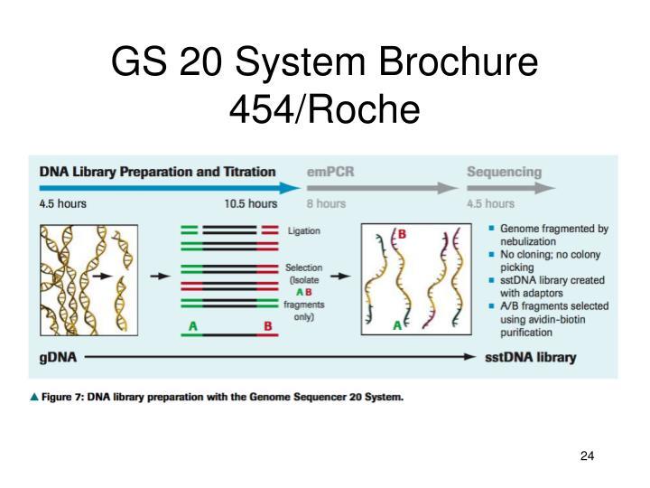 GS 20 System Brochure 454/Roche