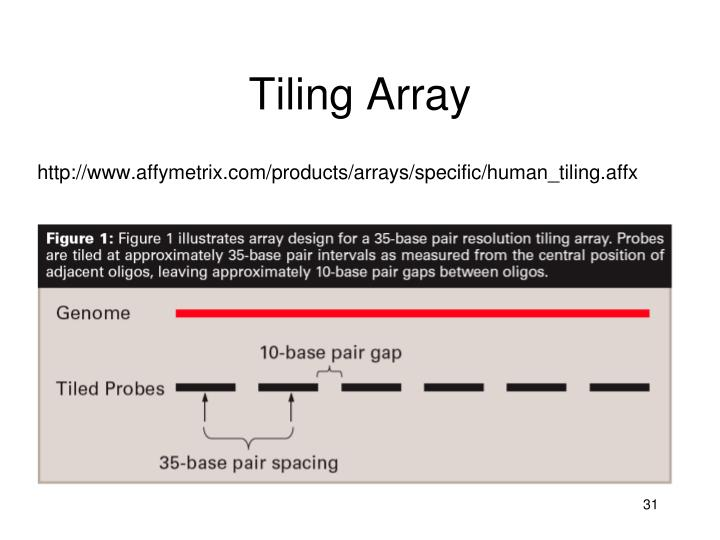 Tiling Array