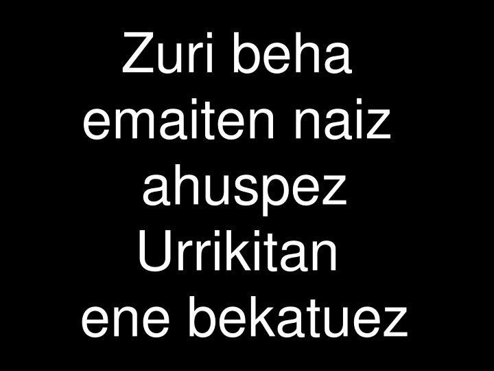 Zuri beha