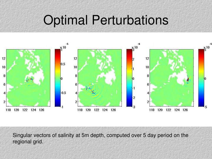 Optimal Perturbations