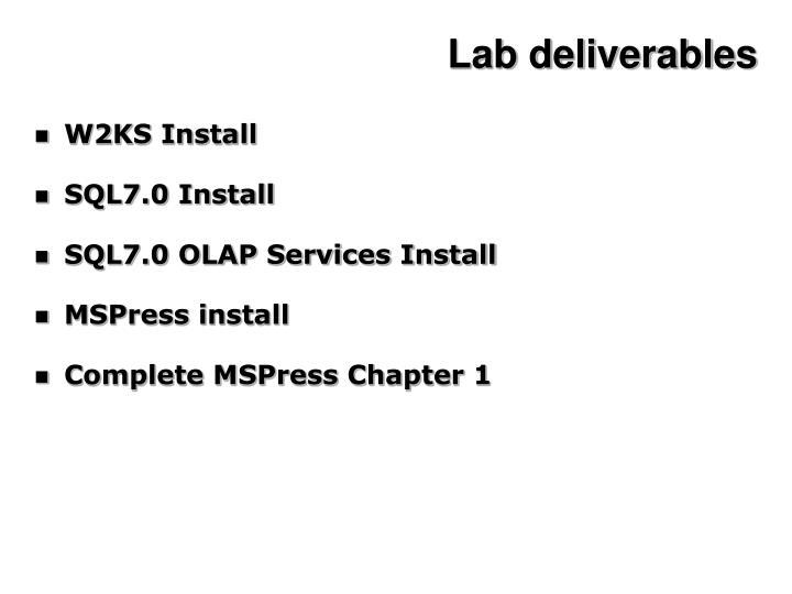 Lab deliverables
