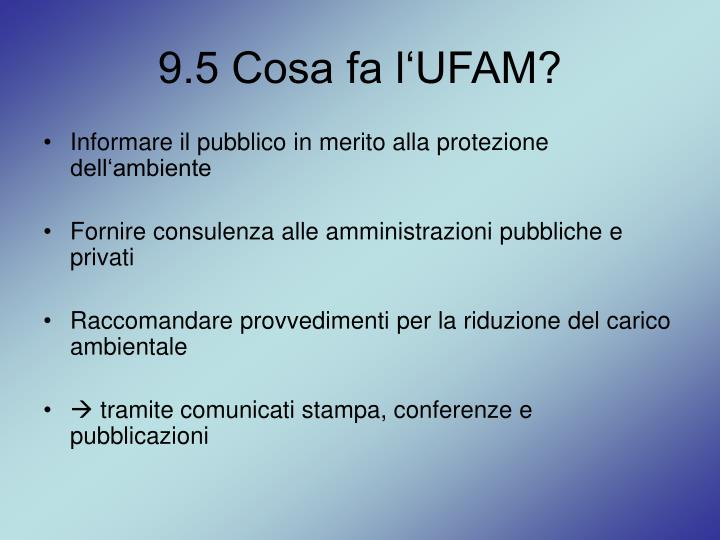9.5 Cosa fa l'UFAM?