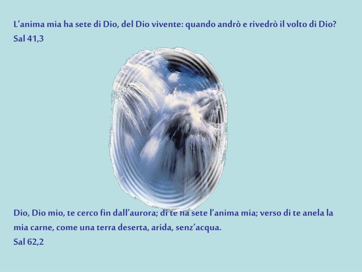 L'anima mia ha sete di Dio, del Dio vivente: quando andrò e rivedrò il volto di Dio?