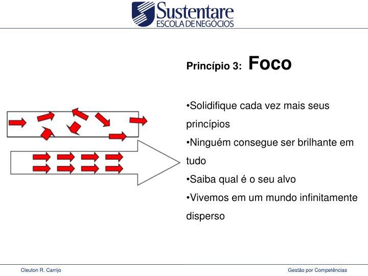 Princípio 3: