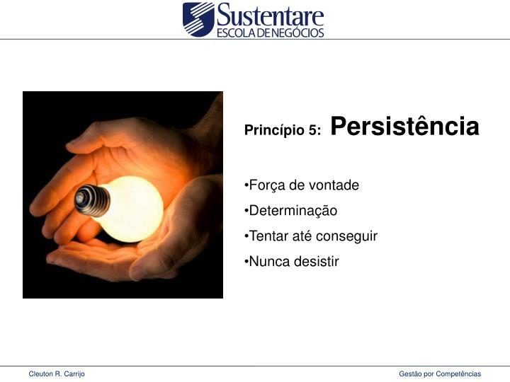 Princípio 5: