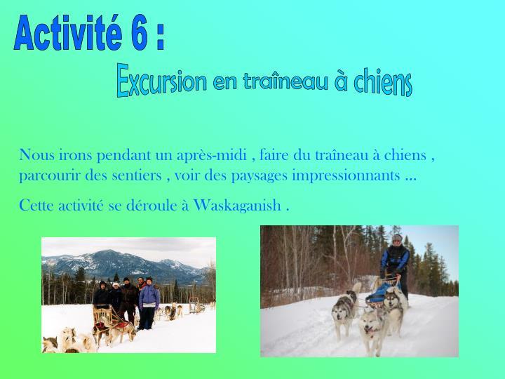 Activité 6 :