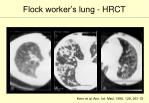 flock worker s lung hrct