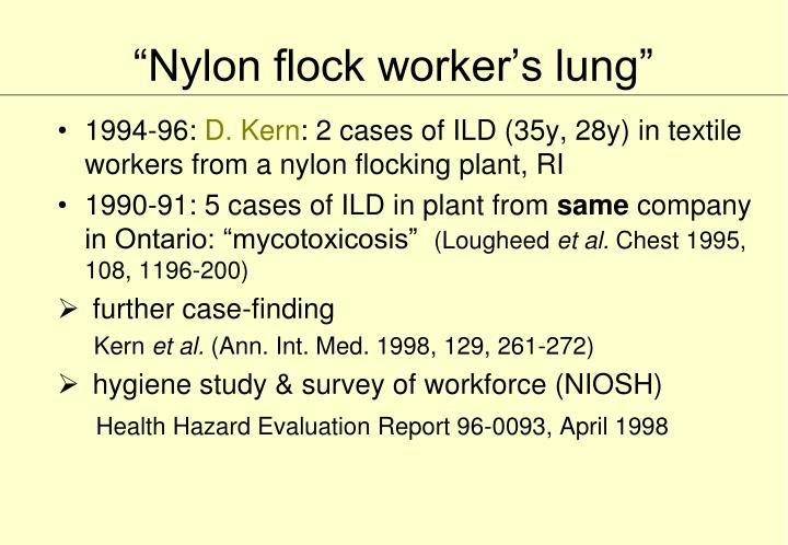 """Nylon flock worker's lung"""