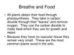 breathe and food