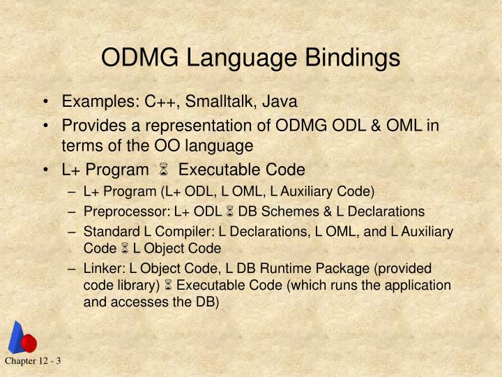 Odmg language bindings