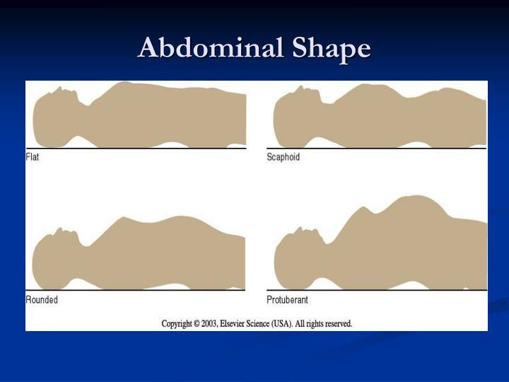 Abdominal Shape