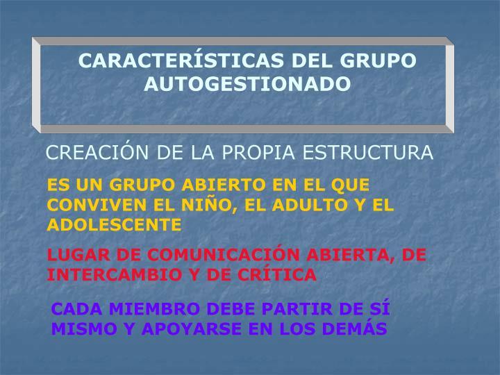 CARACTERÍSTICAS DEL GRUPO AUTOGESTIONADO
