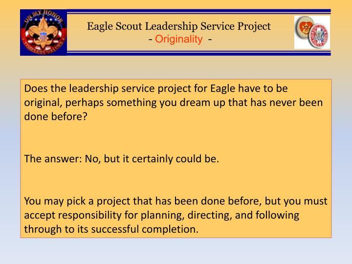 eagle scout service project