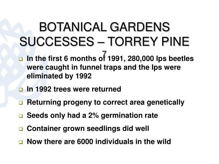 BOTANICAL GARDENS SUCCESSES – TORREY PINE