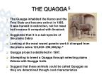 the quagga 5