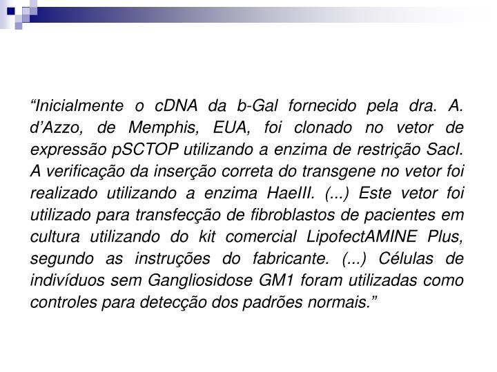 """""""Inicialmente o cDNA da b-Gal fornecido pela dra. A. d'Azzo, de Memphis, EUA, foi clonado no vetor de expressão pSCTOP utilizando a enzima de restrição SacI. A verificação da inserção correta do transgene no vetor foi realizado utilizando a enzima HaeIII. (...) Este vetor foi utilizado para transfecção de fibroblastos de pacientes em cultura utilizando do kit comercial LipofectAMINE Plus, segundo as instruções do fabricante. (...) Células de indivíduos sem Gangliosidose GM1 foram utilizadas como controles para detecção dos padrões normais."""""""