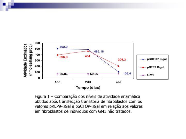 Figura 1 – Comparação dos níveis de atividade enzimática obtidos após transfecção transitória de fibroblastos com os vetores pREP9-