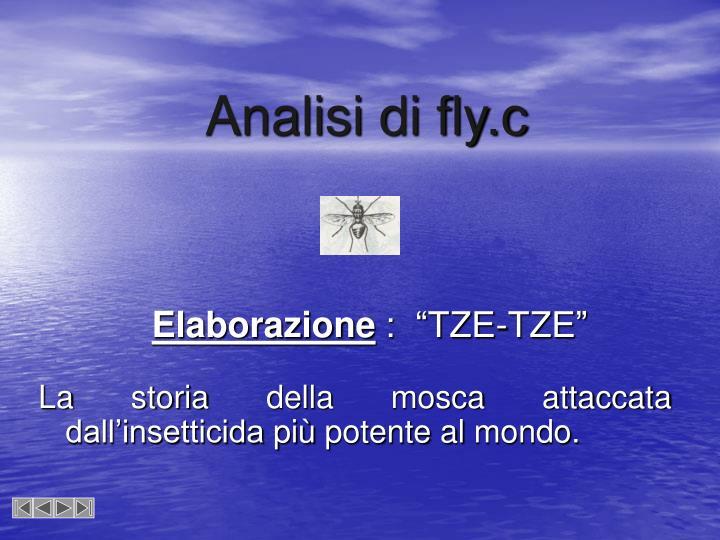 Analisi di fly.c