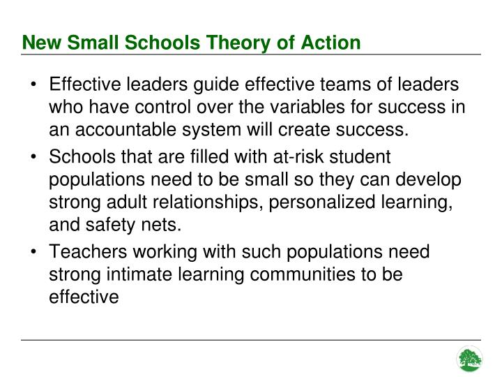 New Small Schools Theory of Action