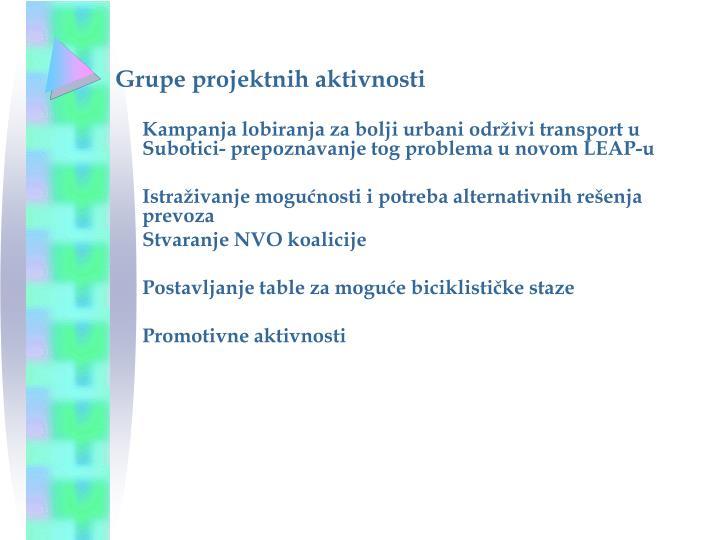 Grupe projektnih aktivnosti
