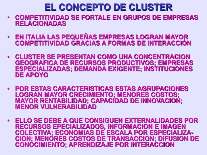 EL CONCEPTO DE CLUSTER