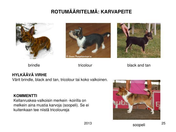 ROTUMÄÄRITELMÄ: