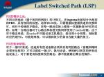 label switched path lsp1