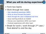 what you will do during experiment