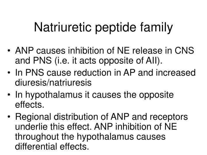 Natriuretic peptide family